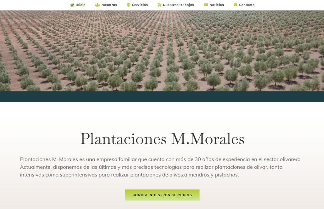 Plantaciones M. Morales